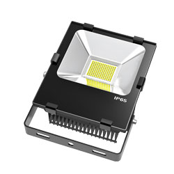 LED Flood Light b series 50w 250x250