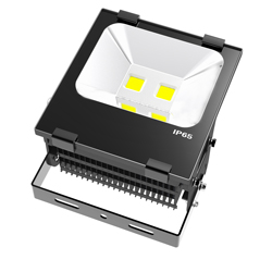 LED Flood Light b series 100w 250x250
